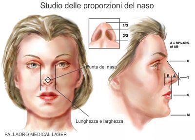 Chirurgia Estetica Naso: Proporzioni