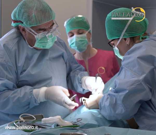 chirurgia estetica costi qualita